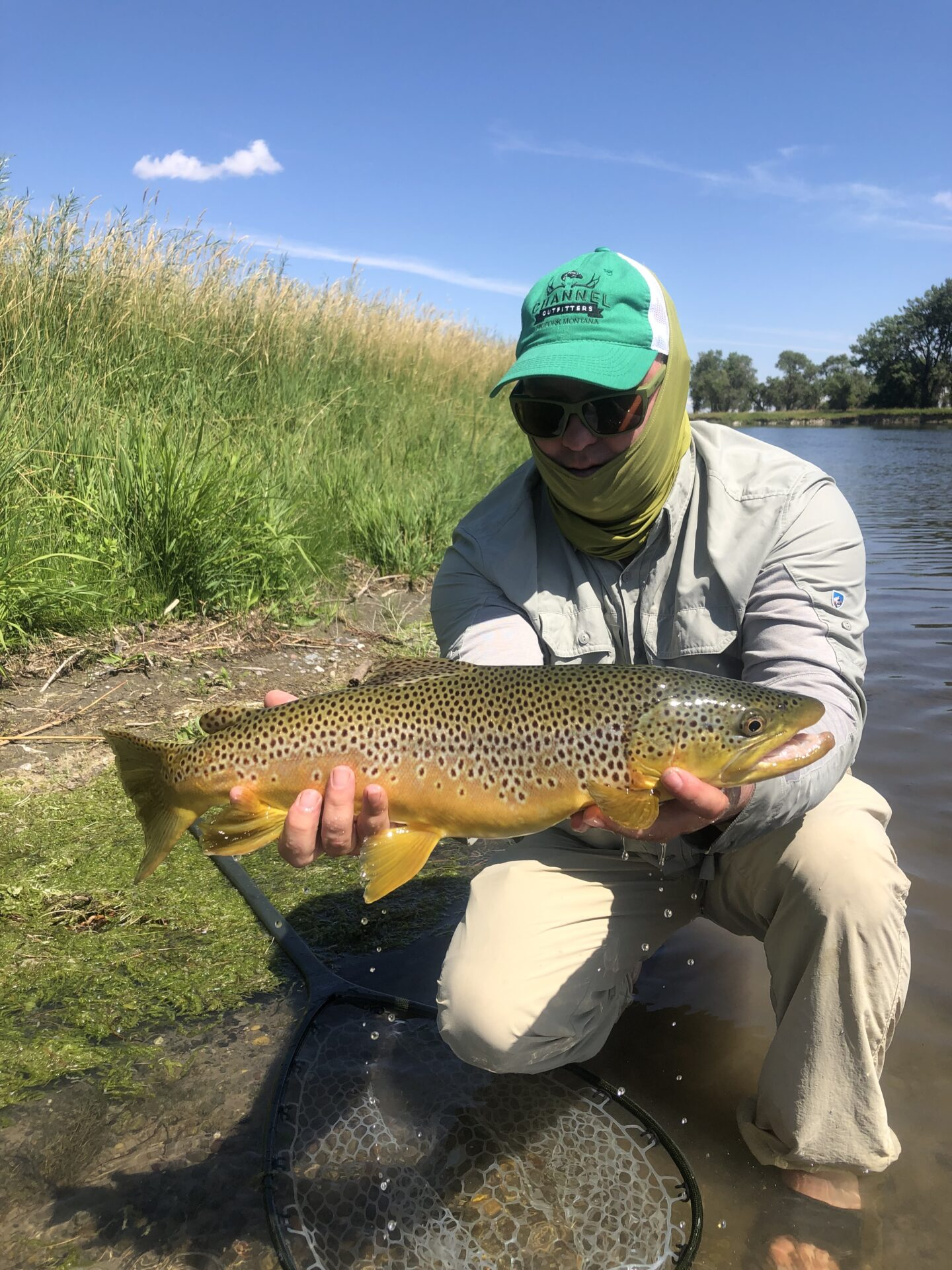 Montana Brown Trout caught while Fly-Fishing The Missouri River